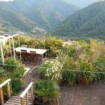 Il giardino in terrazza: consigli e suggerimenti di chi lo ha realizzato