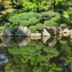 Come realizzare un giardino roccioso, alcuni consigli