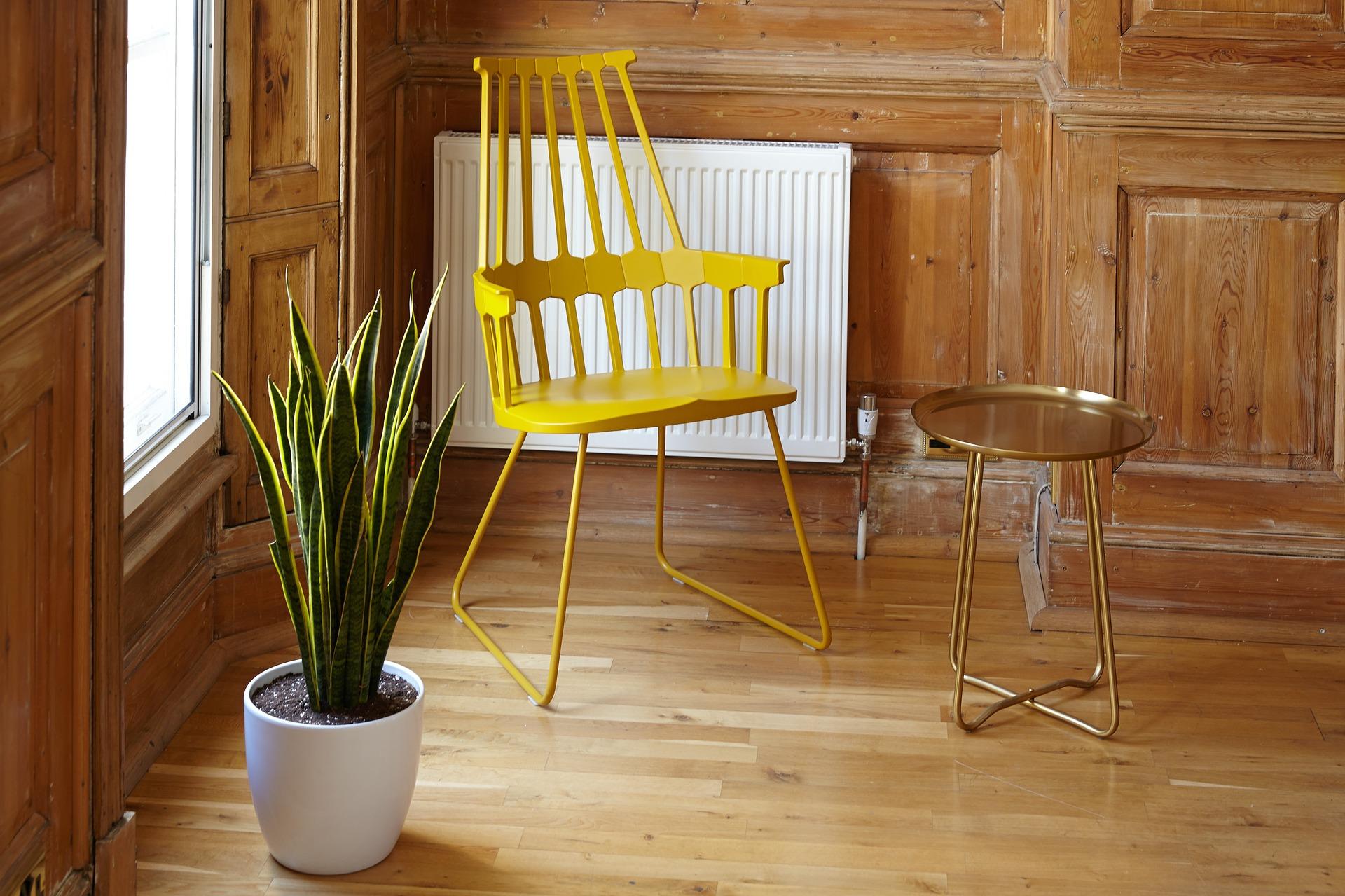 Piante Da Arredo Appartamento come curare le piante da appartamento in inverno