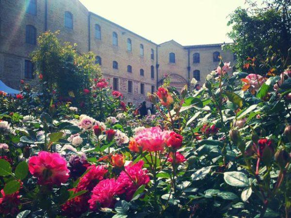 FlowerShow Ancona