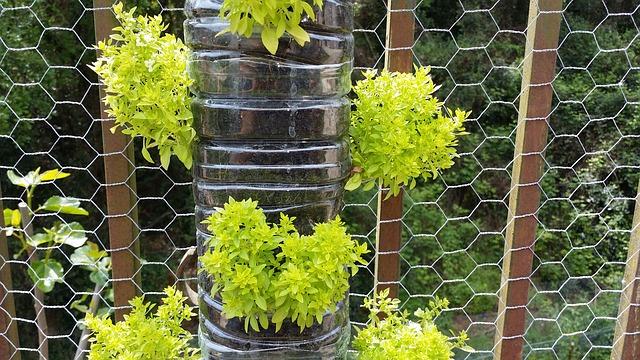 vasi per il giardino verticale