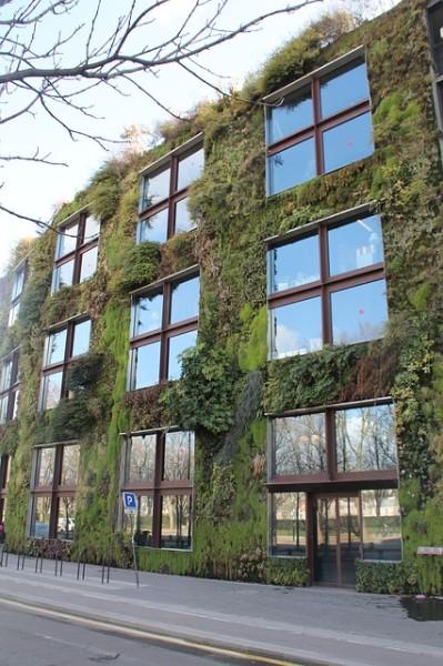 Vasi per il giardino verticale for Giardino casa classica