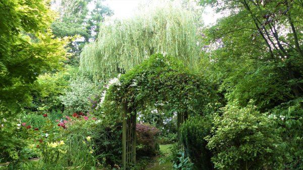 arco nel giardino di Helena