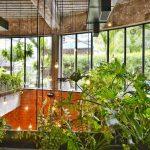 Coltivazione Indoor: da dove iniziare?