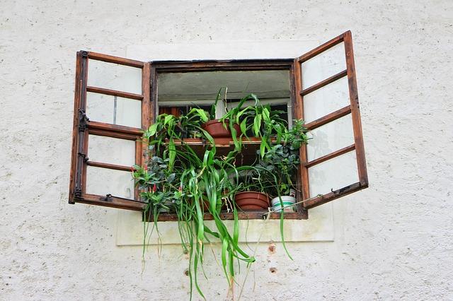 Fiorere da finestra - Fioriere per interni ...