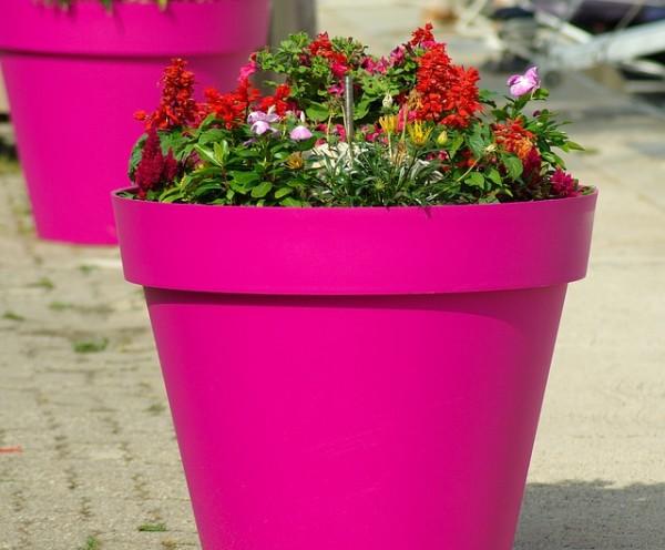 Vaso in Plastica rosa