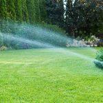 Impianto di irrigazione: cos'è e come si costruisce secondo Daniele Marinotto