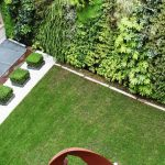 I giardini verticali: il fascino e il benessere di una scelta intelligente