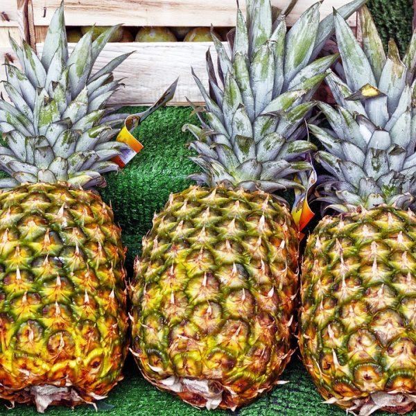 proprietà ananas comosus