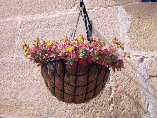 Amato Come scegliere Vasi e Contenitori per terrazzi e balconi: Consigli  AY99
