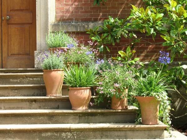 I vasi da giardino per arredare con piante e fiori for Arredare un terrazzo con piante e fiori