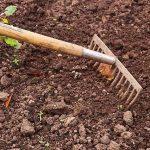 Quali sono gli strumenti indispensabili per fare giardinaggio?