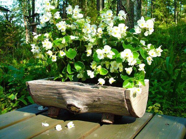 Fioriere nei tronchi - Giare da giardino ...