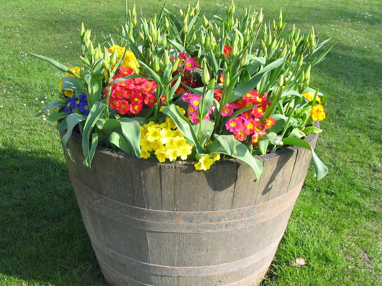 Composizione Vasi Da Balcone i vasi da giardino per arredare con piante e fiori