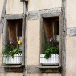 Fioriere da finestra